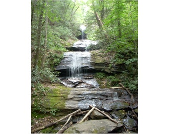 Forest Waterfall Photograph Nature Photography Woodland Forest Photo Cabin Decor
