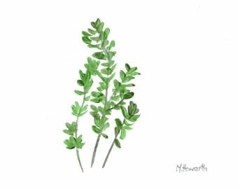 Thyme art original watercolour painting herb art kitchen decor 6 x 4 inch