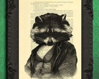 raccoon print raccoon art raccoon poster raccoon on a dictionary paper
