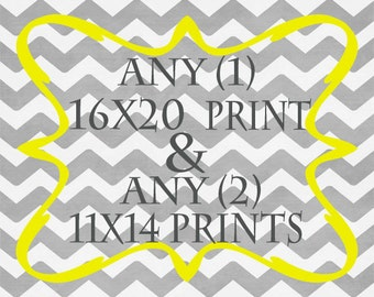 Any (1) 16x20 Print AND Any (2) 11x14 Prints - ANY prints from Rizzle And Rugee