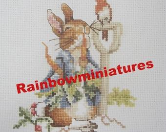 cross stitch beatrix potter peter rabbit  (2)  CHART INSTRUCTIONS ONLY lakeland artist new