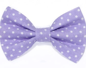 Purple polka dot cat bow tie & dog bow tie