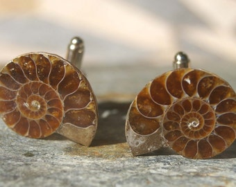 Ammonite Cufflinks - Ammonite, Fossil, Gifts for Men, Formal, Wedding, Father's Day, Gift for Dad, Fossil, Groomsman Gift, Teacher Gift