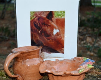 Hand Thrown Pitcher and Matching Bowl with Original Photograph Thrown Ready to Ship!