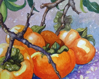 Persimmons on the Branch art print from original Watercolor Painting 6 by 6 inches