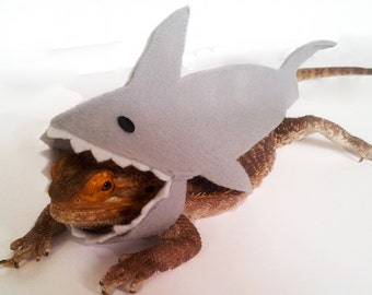 Bearded Dragon Clothing! Shark! TWO colours!