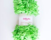 Lime Green Tissue Fringe Garland, 25 Feet - by Celebration Lane