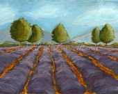 Lavender #21 - Fine Art PRINT - Lavender Field in Italy or France... (your dream, your choice) - contemporary, acrylic painting, landscape