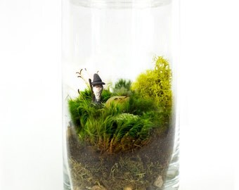 Moss Terrarium // Wizard