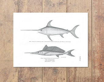 Swordfish Art in Black and White-Fishing Art Ocean Wall Decor Beach Decor Gifts For Dad Nautical Print Home Decor Nautical Decor Fathers Day