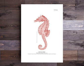 Seahorse Art in Red- Beach Decor Nautical Decor Ocean Wall Decor Beach Art Nautical Print Beach Print Gifts for Dad Father's Day Gift