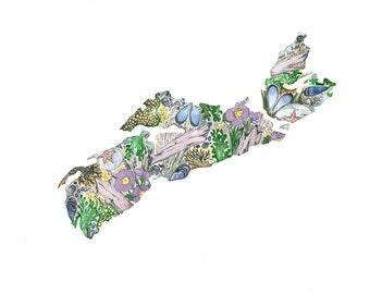 Nova Scotia Provincial Map Shoreline with Beach Rose 8x10 print