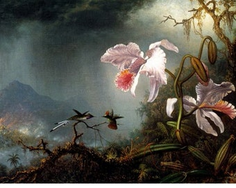 """TWO HUMMINGBIRDS on an orchid  PAINTING by Martin Johnson Heade. 11 x14"""" canvas art print"""