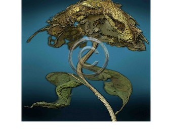 Sunflower 4, Digital print, 8x8 inch image on 11x14 rag paper