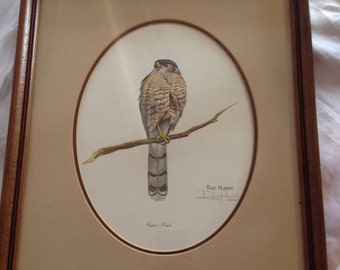 FREE SHIPPING Vintage Framed Ray Harm Signed Print/ Coopers Hawk