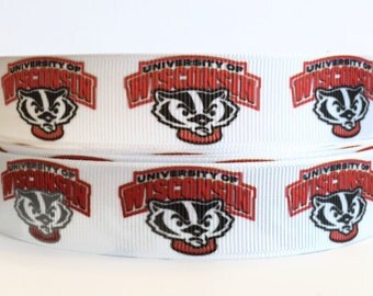 7/8 inch Grosgrain University of Wisconsin Badgers Ribbon, Sports Grosgrain, Team Ribbon, Grosgrain Ribbon By The Yard by KC Elastic Ties