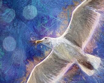 Bird Print, Nature Art, Seagull Print, Blue and White Art, Large Wall Art, Wall Art Prints, Sea Gull Prints, Flying Bird, Bird Decor