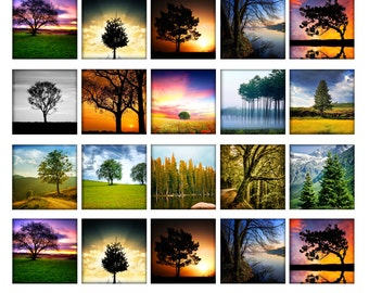 Trees 2 (Summer / winter) - 1,5'' squares, graphics x scrapbooking, Digital Printable Images File 8,5x11, BUY 2 GET 1 FREE