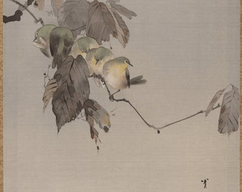Japanese old art. Birds on a Branch by Watanabe Seitei . Asian art. Fine art.  Old Japanese painting.