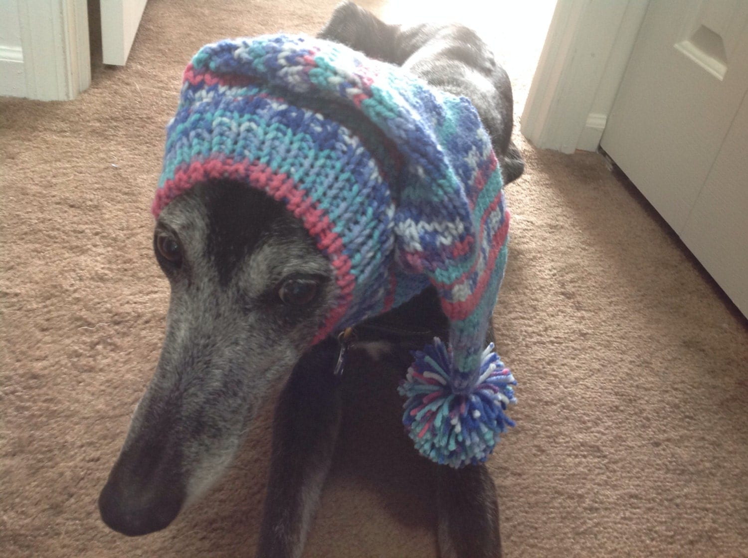 Pointy hat with snood for greyhound in fair isle pattern amber glow bankloansurffo Images