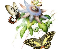 Passion fruit flowers and butterflies - Temporary tattoo