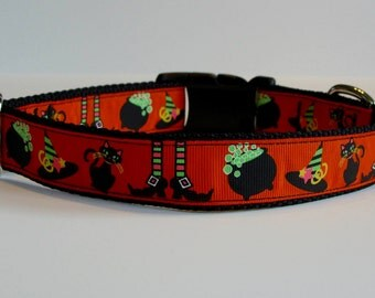 Witches Brew Halloween Dog Collar READY TO SHIP!