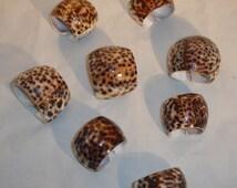 Seashell Napkin Holders Tiger Cowrie Sea Shells Set of 8