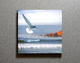 Flying Seagull Ceramic Coaster Tile Wall Drink, Sea Gull Cape Cod Blue Water Ocean Waves Bird Wildlife Summer Nautical