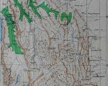 1901 Timber Map Montana Lewis & Clark Forest Reserve Distribution of Cedar, Hemlock, Silver Fir, White Pine. Julius Bien Antique Lithograph