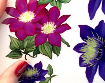 SALE -50% - Set of 10 Clematis Flower Decals - Kitchen Laundry Tiles Furniture Decals -Flower Stickers for Kitchen, Laundry or Bathroom