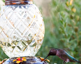 Best Hummingbirds Feeder in Cool Pineapple Design - #1 Rated With 4 Nectar Feeders - Great Gift for Hummer Lovers!
