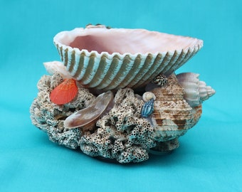 Candle Holder, Candy Dish, Jewelry Tray, Seashell Candleholder, Coral, Seashells