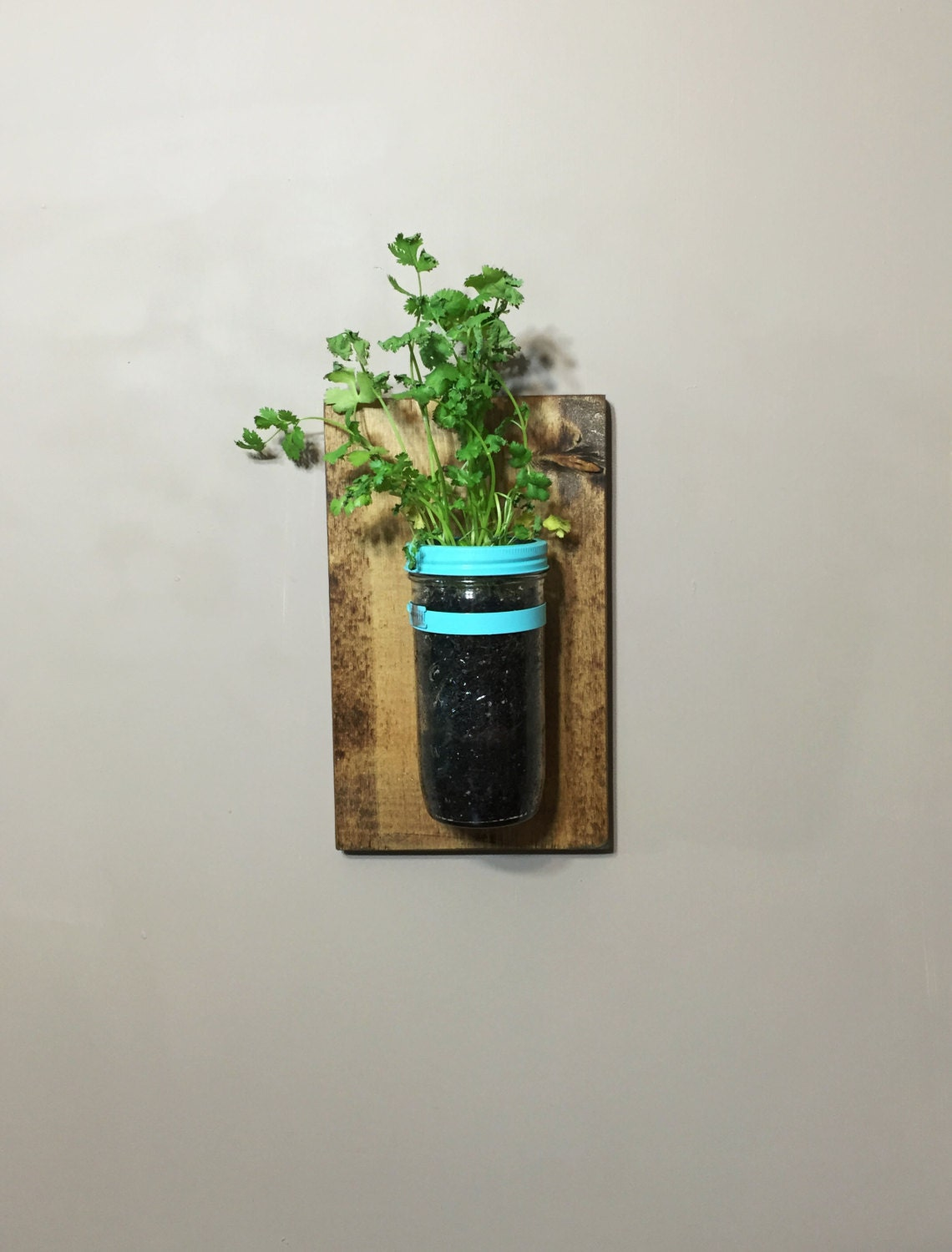 FREE SHIPPING Vertical Planter Indoor Herb Garden by