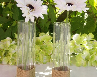Decorative Test Tube Vase