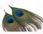 Flowing Natural Peacock Feather Earrings