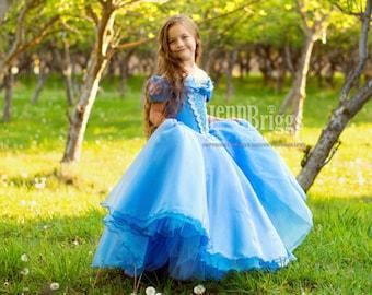 New Cinderella Inspired dress  custom ballgown 5