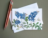 Bluebonnets, Texas state flower, pressed flowers, Austin, greeting card no.1193