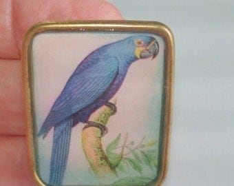 Blue  Bird  Jewelry Animal Brooch KL Design