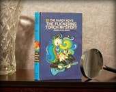Hollow Book Safe (Vintage 1971 The Hardy Boys: The Flickering Torch Mystery)