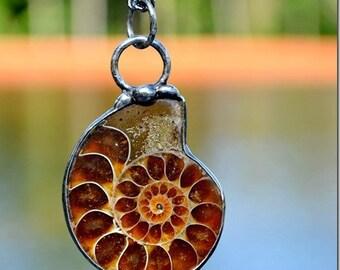 Ammonite Fossil Jewelry, Ammonite Necklace, Shell Necklace, Unisex Jewelry, Ammonite Jewelry, Shell Jewelry, Prehistoric Ammonite (2356)