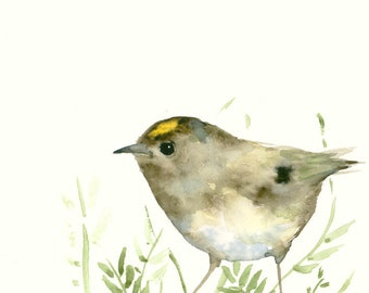 Original Watercolor Painting Goldcrest and Leaves