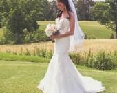 Wedding Veil Swarovski Crystal Rhinestone Silver Pencil Edge Trim 2 Tier Waist Length Double Layer Veil The Sebrina Veil