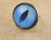 Blue Cat's Eye Adjustable Ring - Great for a Christmas gift!