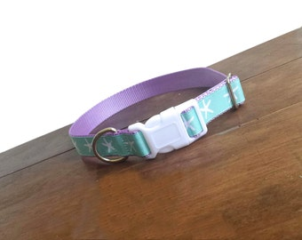 Sea Lover Dog Collar,  Starfish Collar Different colors available
