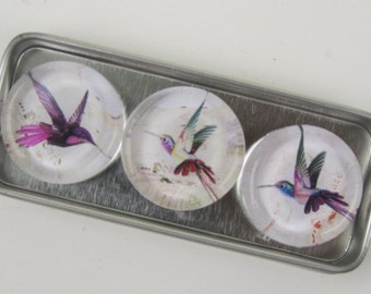 Hummingbird Magnets, Magnet Set Storage Tin