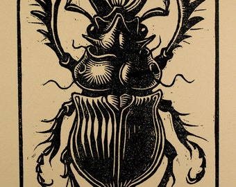"Beetle Linocut - 4x6"" - Relief Print"