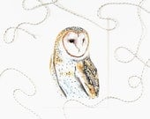 Barn Owl 5x7 Art Print - Owl Woodland Giclée Print