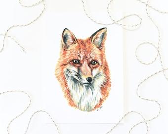 Red Fox 5x7 Art Print - Fox Portrait Giclée Print