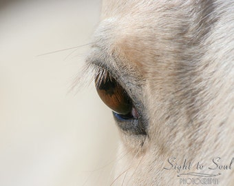 Dreamy Horse Eye Photography, Western Decor, Animal Photography, Horse Lover Gifts, Equine Art Print