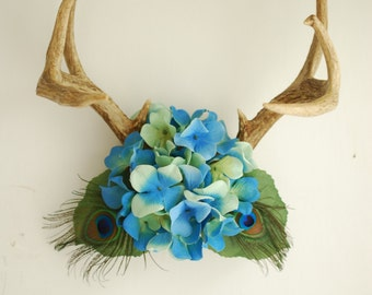 Deer Antlers with Blue Hydrangea Flowers & Peacock Feathers - Turquoise Green Wall Hanging Taxidermy 8 Point Boho Home Decor Decoration